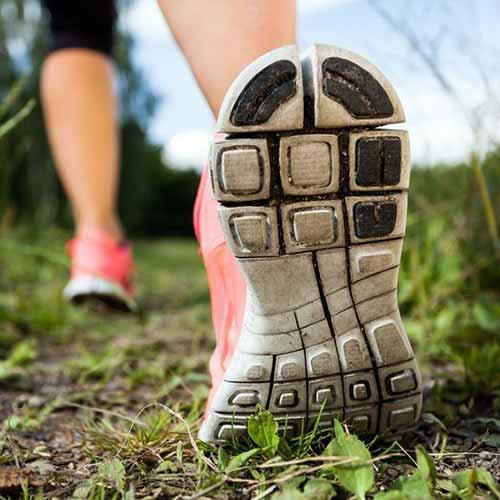Chiropractic Supports Active IIndividuals